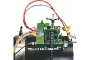 Máy cắt ống AUTO PICLE tự động