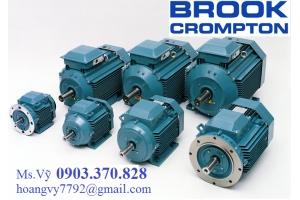 Động cơ điện Brook Crompton