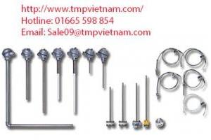 Cảm biến nhiệt độ PT100 Wise R941 – Wise Vietnam - TMP Vietnam