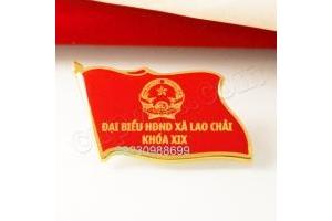 huy hiệu, huy hiệu đại hội, huy hiệu