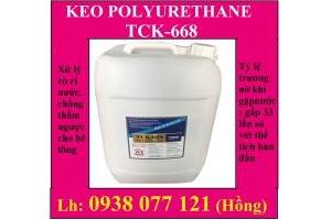 Keo Polyurethane trương nở chống thấm ngược PU TCK-668